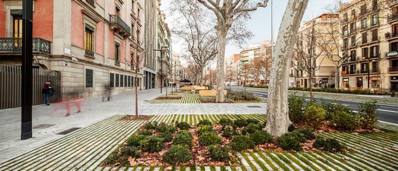 Landscape Project | Lola Domenech, 2014