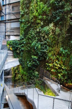 The green wall is the work of Patrick Blanc,a botanist and the inventor of the Vertical Garden.