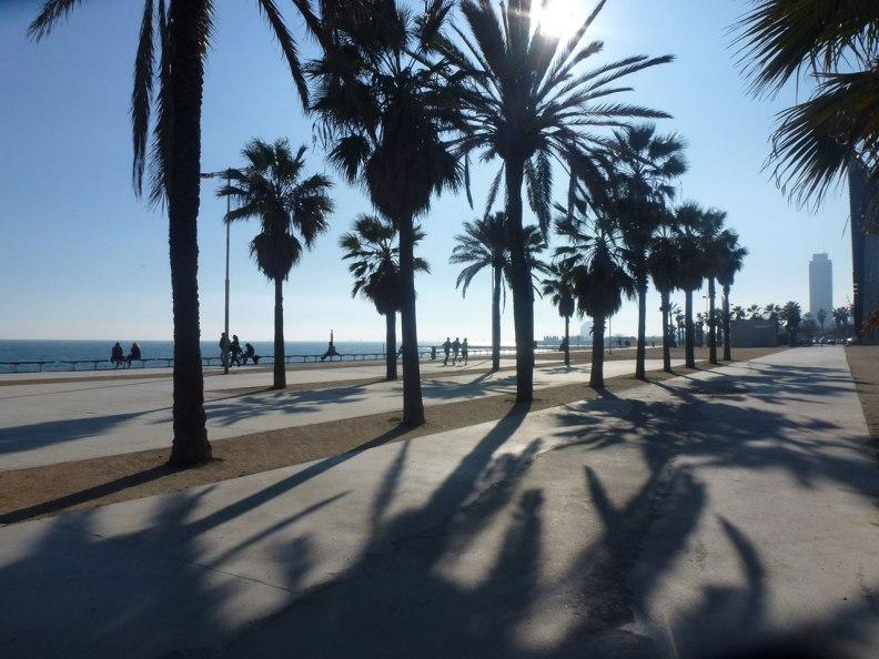 sundays01