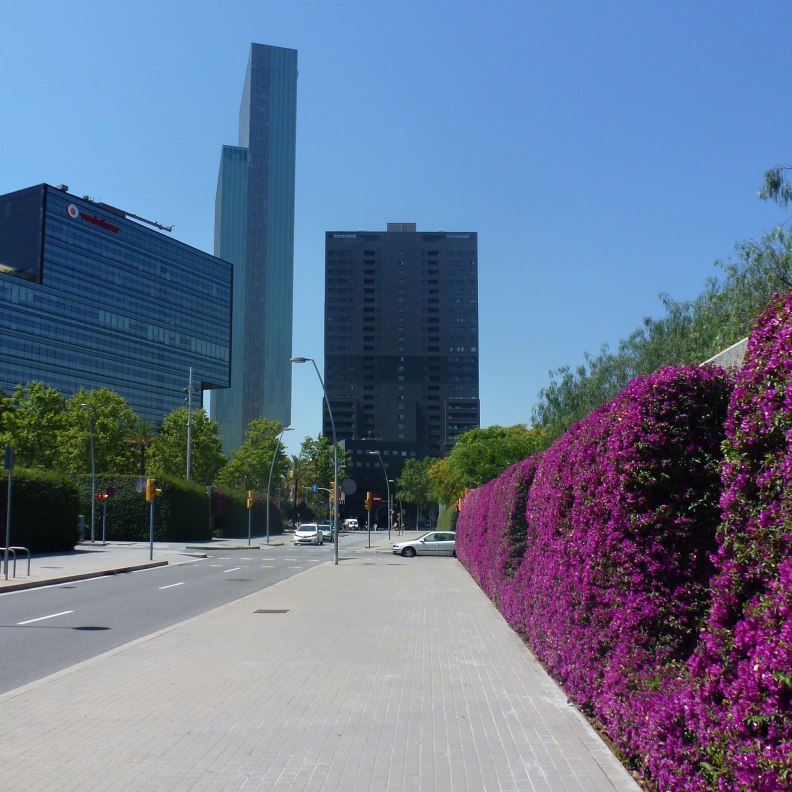 Jean Nouvel Parc del Poblenou, bougainvillea fence, view towards Diagonal avenue with Melia Hotel by architect Dominique Perrault